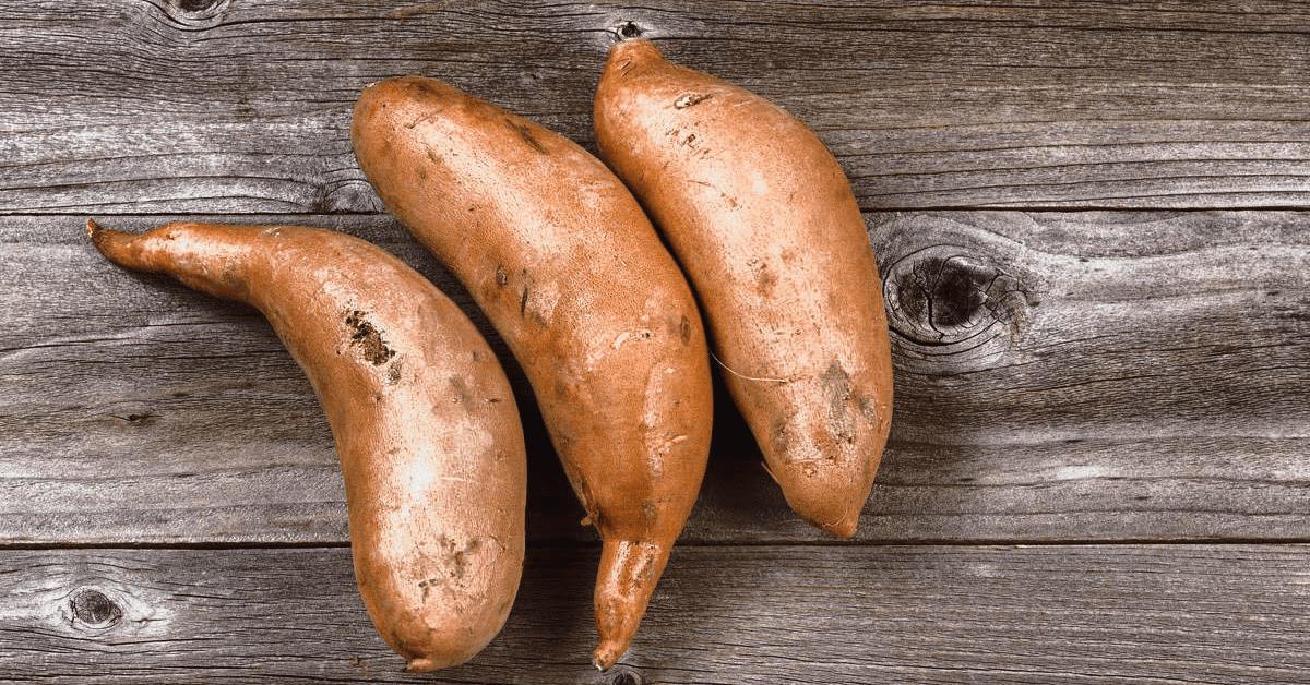 is sweet potato good for dogs