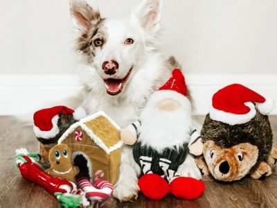 dog gift guide to the best holiday dog toys