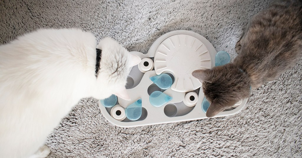 interactive cat games by nina ottosson pet stages