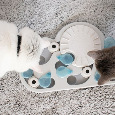 cat puzzle toys & interactive cat games
