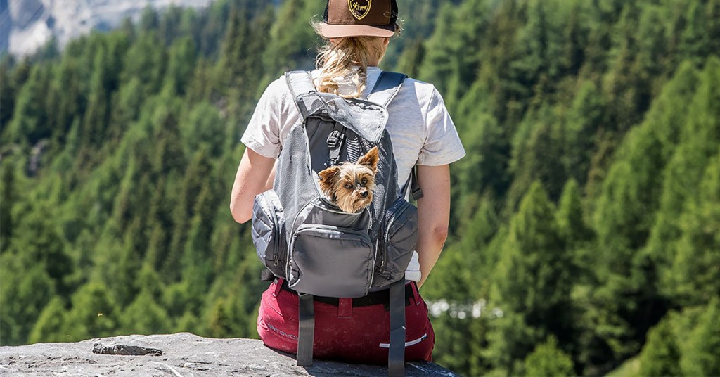 the Pooch Pouch Carriers are great small dog carriers to bring with you when hiking with dogs