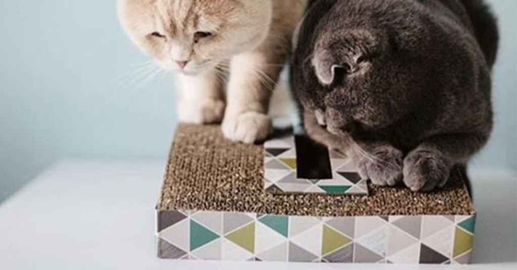 The Scratch & Rock Cat Scratcher can help soothe stress in pets