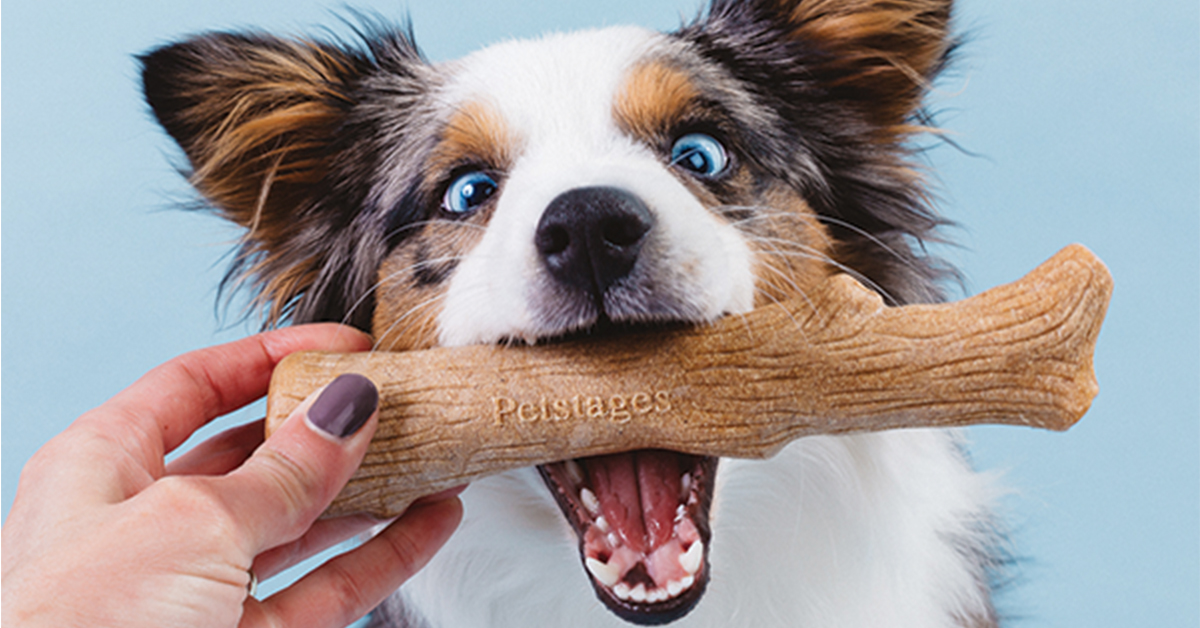 best chew toy for working breeds