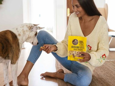are bananas ok for dogs pet sitter