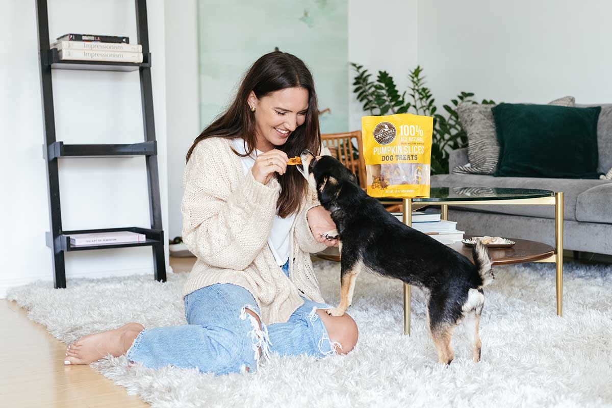 dog socialization post-covid dog treats