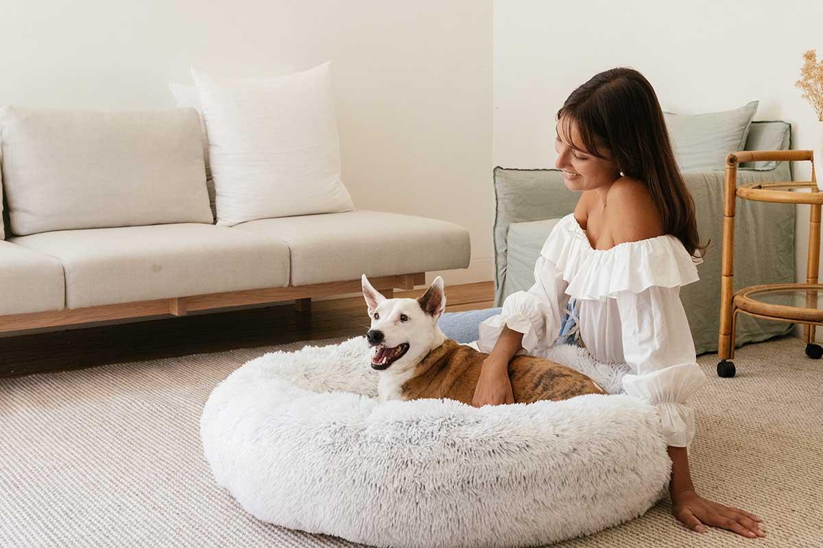 calming dog bed model