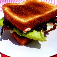 brown sugar bacon BLTs with fresh herb mayo
