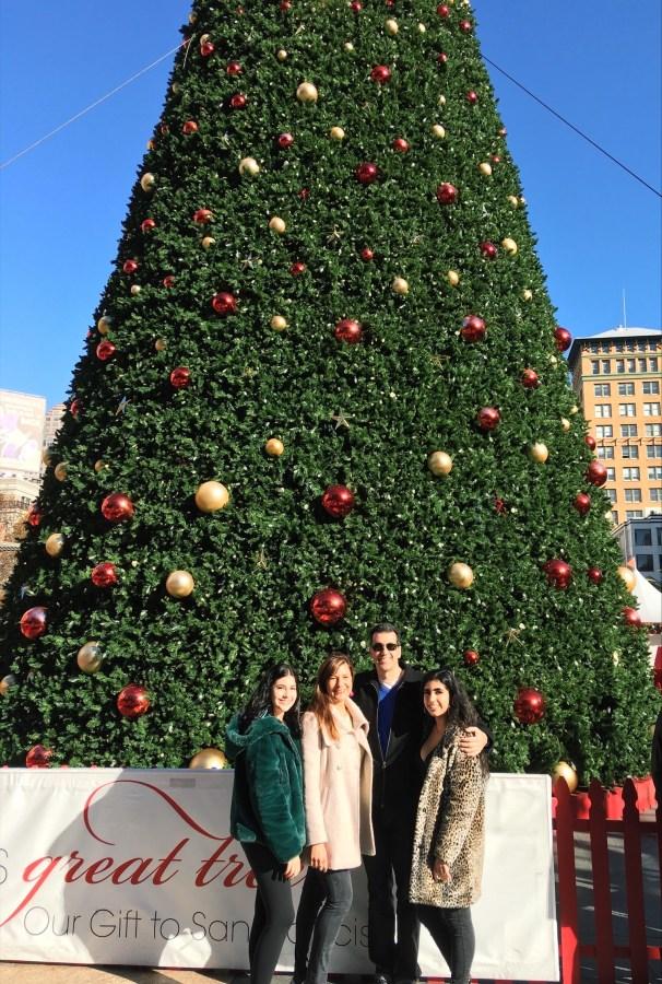 family, Christmas, tree