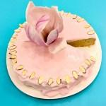 cake, almonds, almond flour, gluten free