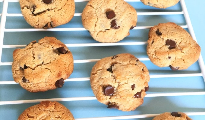 Paleo Honey Sweetened Almond-y Dark Chocolate Chip Cookies
