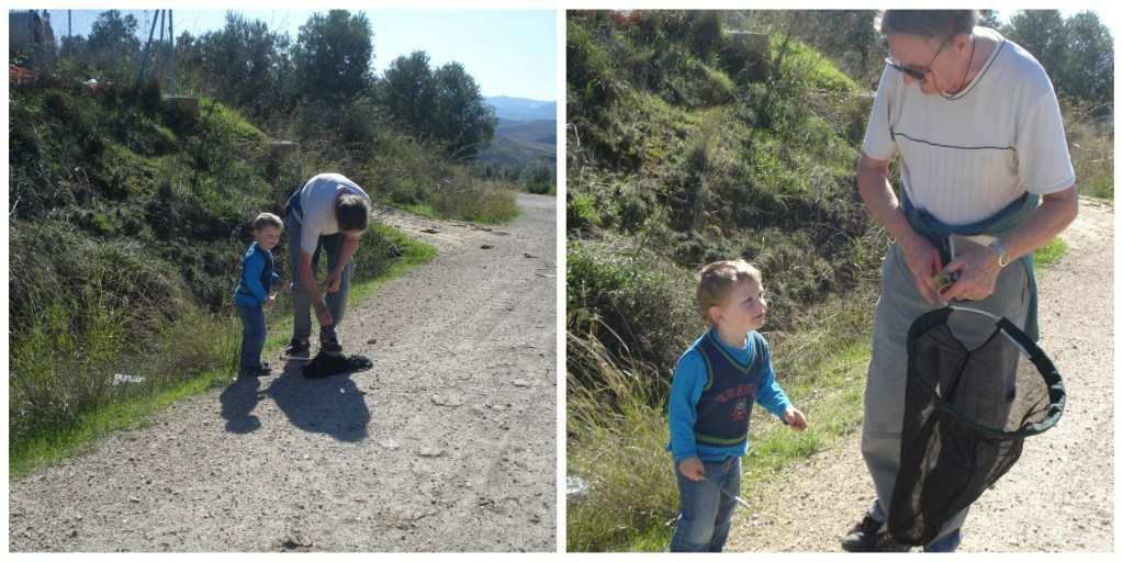 Monkey and his Gramps catchingf butterflies in Spain Nov 2012