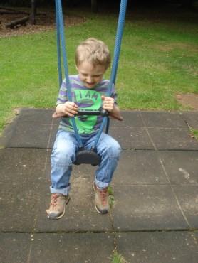 monkey just loves his swings