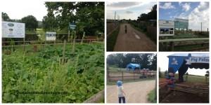 Hatton Country World, Hatton Adventure Farm