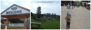 Hatton Country World, Hatton Farm Park, Days out in Warwickshire