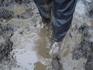 Thick Oozy Mud