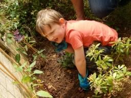 Gardening with Monkey