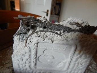 Science & Play Archeofun T-Rex & Triceratops