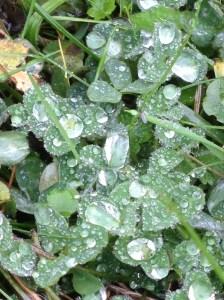 Hill End Centre in the rain