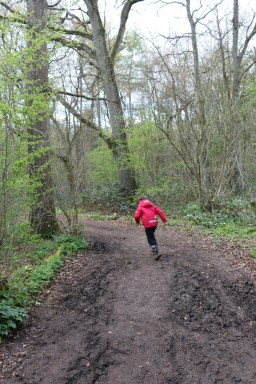A trip to Stoke Wood