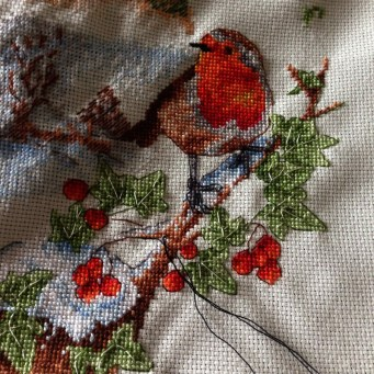 Cross Stitch with Coats Crafts UK 21