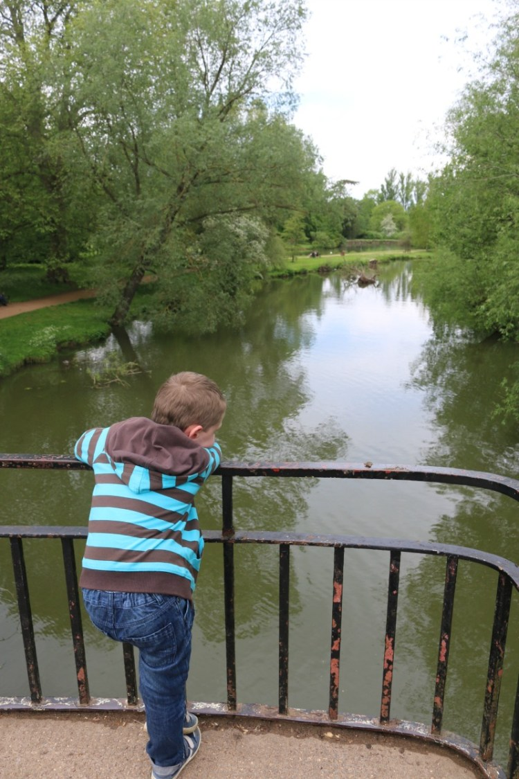 A first visit to Oxford University Parks