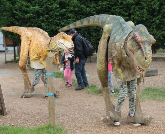 A day spent tracking dinosaurs in Staffordshire 72