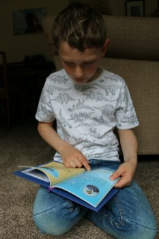 Encouraging reading with Bookabees