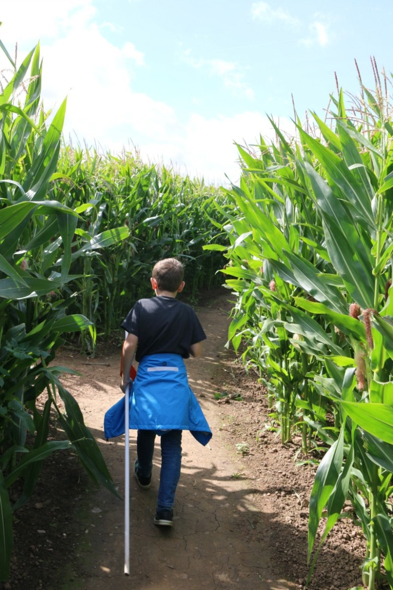 Pirate adventures at National Forest Adventure Farm