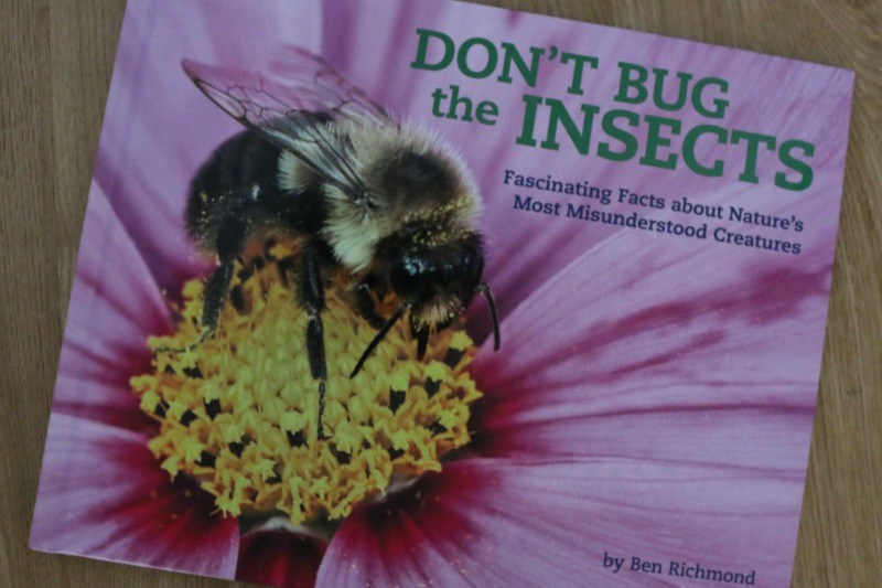 Don't Bug the Insects