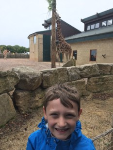Enjoying Marwell Zoo and the Great Bricks Safari