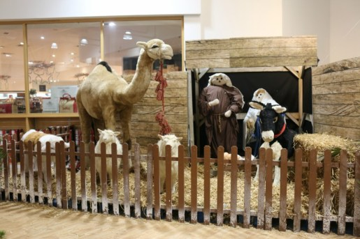 Little Diggers Christmas Grotto at Wyevale Bicester