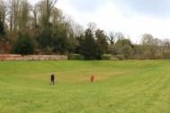 Running free at Upton House