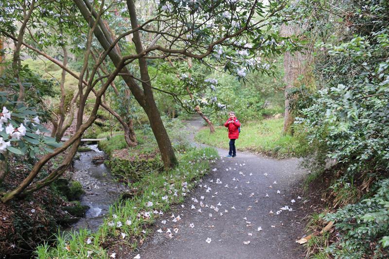 Exploring Bodnant Garden