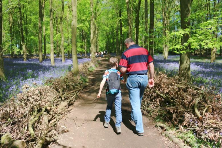 Bluebell spotting in Dockey Woods