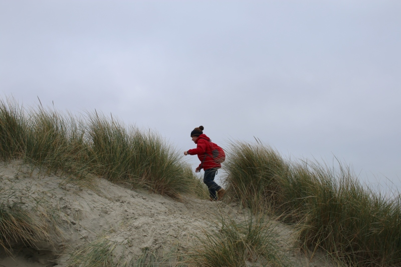 Exploring the beach at West Wittering