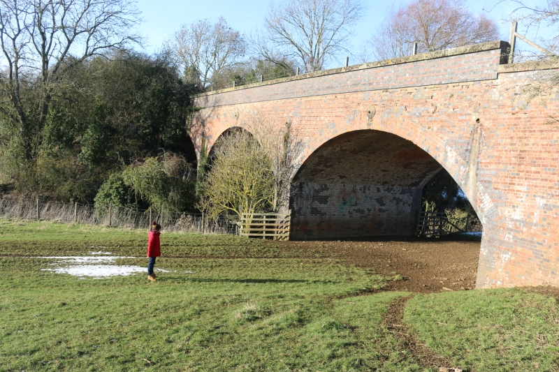 Exploring the Buckingham Railway walk and beyond