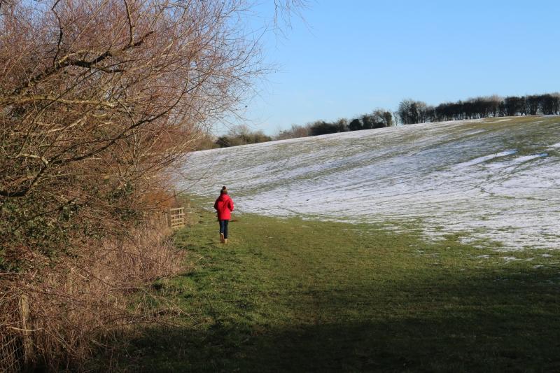 Exploring the Buckingham Railway walk and beyond
