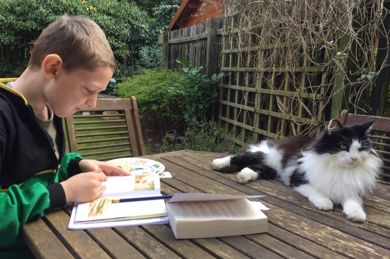 The reluctant reader journey continues