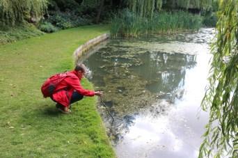 Exploring Ascott House and Gardens