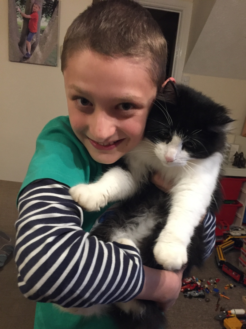 Helping a child deal with the loss of a pet