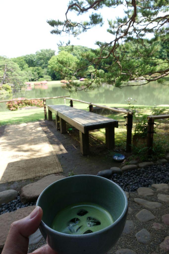 六義園 お茶を頂きながら吹上茶屋から池を眺める