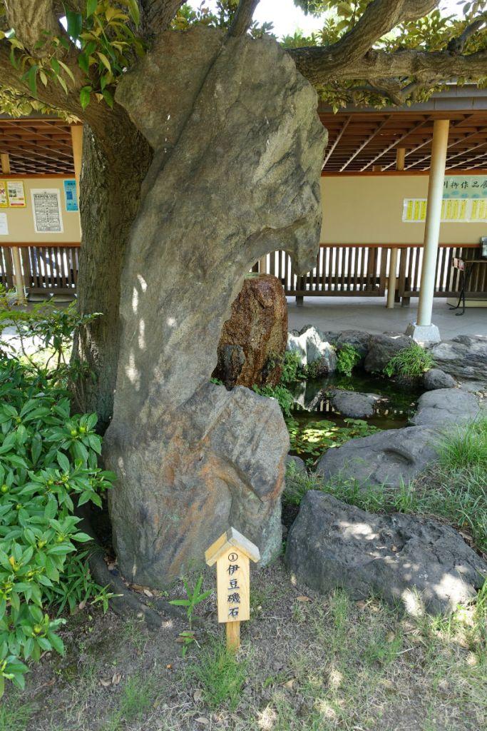 清澄庭園 園内の石の例2