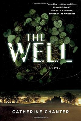 Well: A Novel