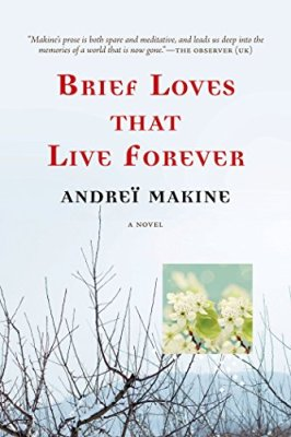 Brief Loves That Live Forever: A Novel