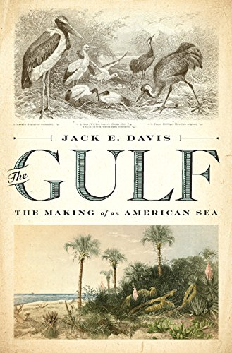 Gulf: The Making of An American Sea