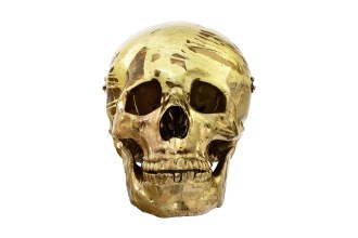 damien-hirsts-magnificent-head-1