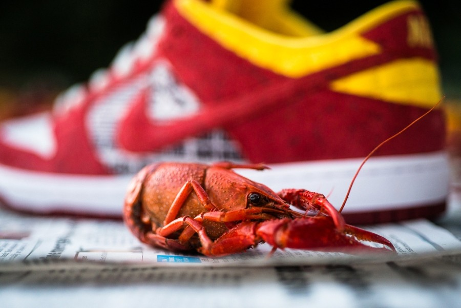 rukus-crawfish-nike sb dunk low-7