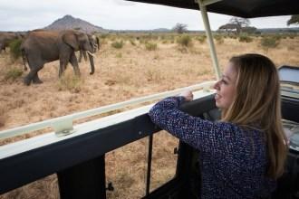Chelsea + Elephant