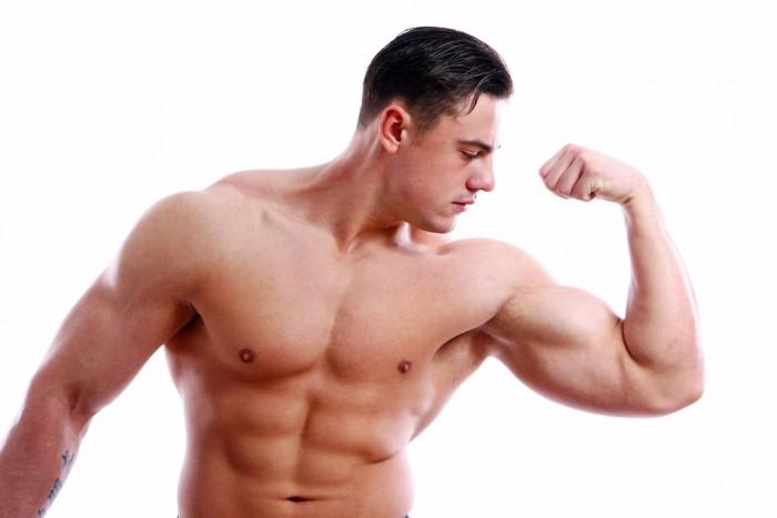 Muscle-Matrix-Solution-pdf