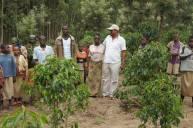 Burundi Kayanza Buziraguhindwa (14)